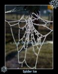 Spider Ice  1  -by request- by LoneWolfPhotography