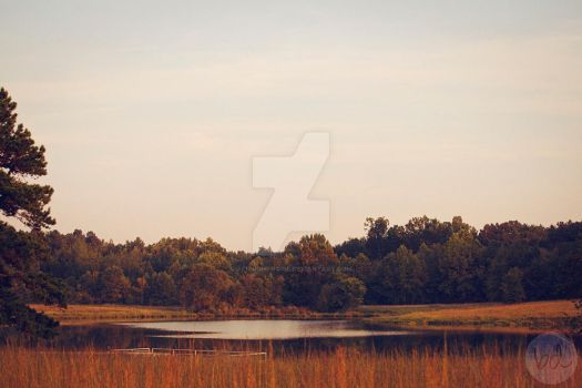 The Lake by allnightnoise