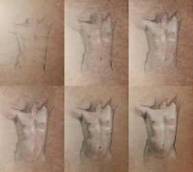Torso study process by SILENTJUSTICE