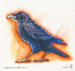Raven Sketch by Dreamspirit