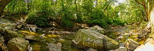 Staten Island Creek Panoramic by SpAzZnaticShuRIken