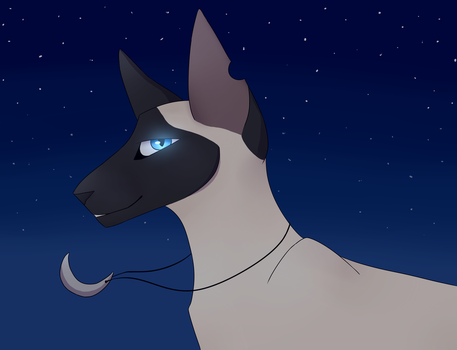 Starry Night by FeatherofOwl