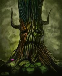 Ancient Tree by krisztianhallai