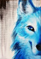 Blue Wolf (Gift) by Moon--Shield