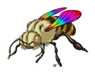 Rainbow Bee by ProdigyDuck