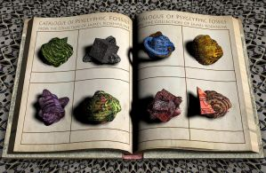 FB3 - Petrified Primitives by lostbooks