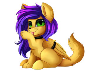 Comm: Kitty pone by pridark
