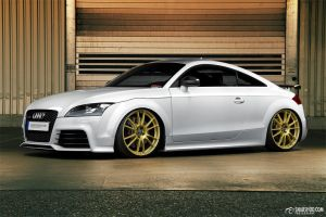TTRS - Christian Steiberger - 3 by mystic-darkness