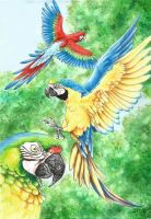 Parrot Paradise by Wuhven