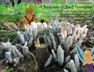 A Bestiary of East Tennessee (promotional flyer 7) by PoisonPiePublishing