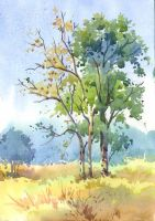 Colour sketch of trees by kios18