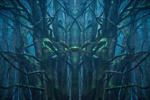 Pan's Labyrinth by aw-landscapes