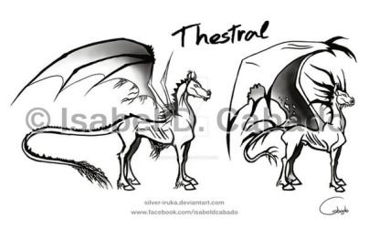 Thestral sketches