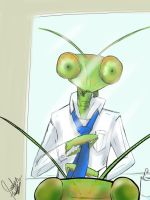 Another day, another mantis by SoulFullofLove