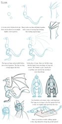 Notes on Wyverns by Expression