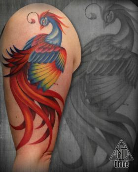Tattoo Phoenix by Coconut-CocaCola