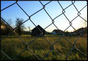 caged No.1 by McFossey