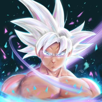 Goku Mastered Ultra Instinct by MahnsterArt