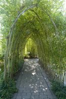 Natural Tunnel Stock by Sassy-Stock