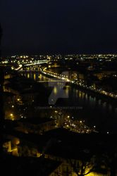 Verona from the tops by Frankdoom