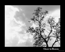 Closer to Heaven --bw by Rivana