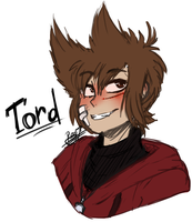 Tord [Eddsworld] [My Design] by RegiregeArt