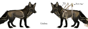 Umbra reference by NukeRooster