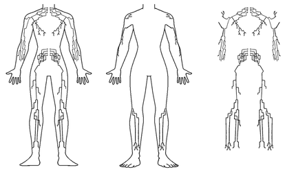Full Body Tattoo - Human Nervous System by noeinan