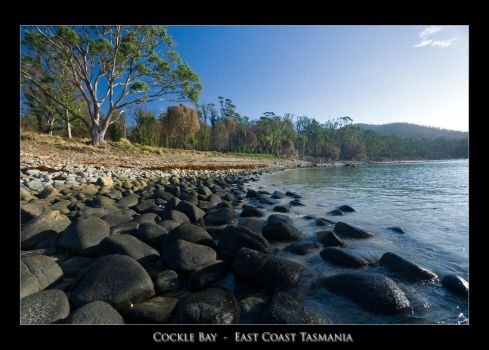 Cockle Bay by eehan