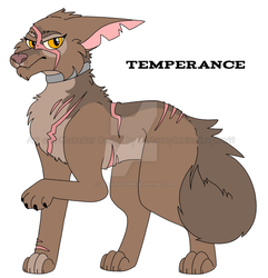 LAB RATS CHARACTER DESIGN  - TEMPERANCE by CartoonyCanine