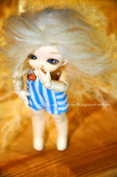 So fluffy and cute by Cesia