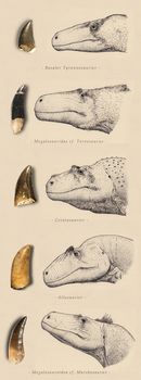 The theropods of northern Germany by Hyrotrioskjan
