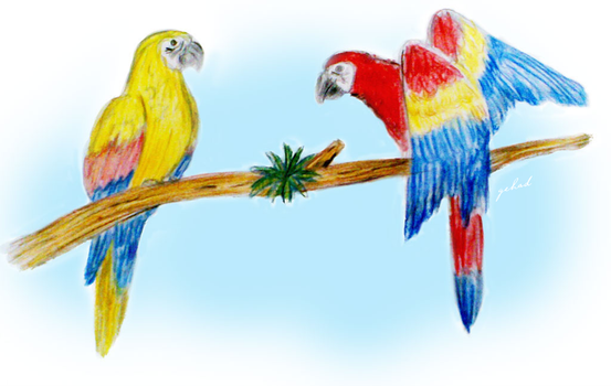 Two Parrots and a vein by GehadMekki
