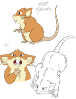 Raticate by tymime
