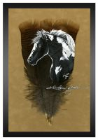 Portrait of a Gypsy Vanner by dittin03