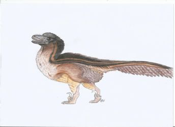 Utahraptor chick by PhanerozoicWild