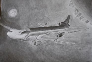 L-1011 attack by concaholic