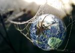 World Wide Web by ChrissieCool