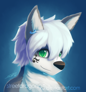 Sekei ID: Commission for SekeiKometto by streetdragon95