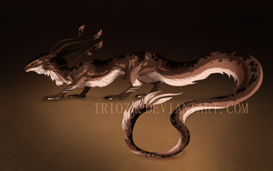 Dragon Design Auction #5 [CLOSED] by Trioza