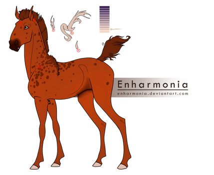 ID- 5077 Decus Coruscare Foal design by Shadow-Hyder