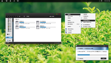 Black Snow Lepord for Win7 by evthan