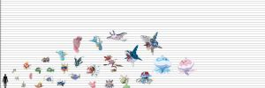Pokemon Size Chart : Fish, Cnidarians, Echinoderms