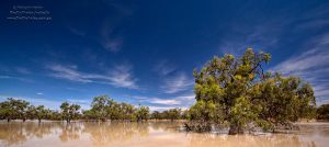 One Perfect Day by FireflyPhotosAust