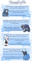 [Closed Species] BloomPuffs Visual Sheet by TheStevieBoy