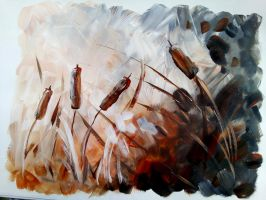 Bulrushes by KateHodges