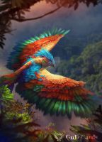 Bird of paradise by Tira-Owl
