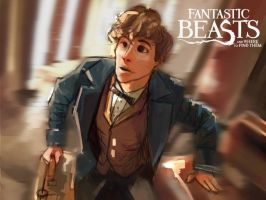 Fantastic Beasts and where to find them by Blatinic
