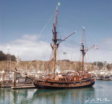 Hawaiian Chieftain by CanYouSeeTheRealMe
