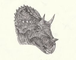Triceratops 2 by Kahless28